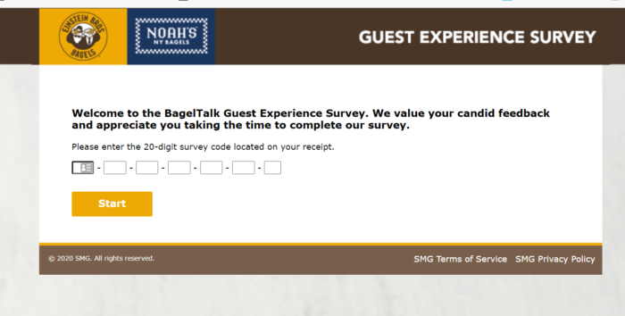 Einstein Bagels Survey – Bagelexperience